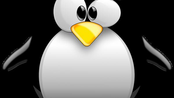 Linux programma's installeren op een Chromebook