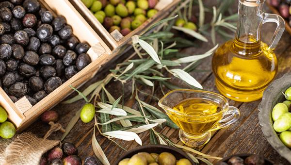 Europa Enkele van de beste olijfoliën worden in Kroatië gemaakt